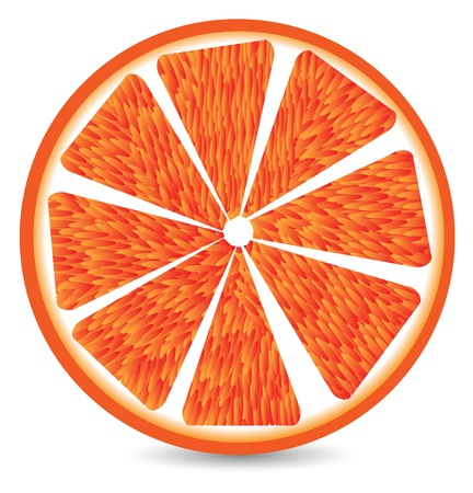 Orange segment isolated on a white background.  Vector