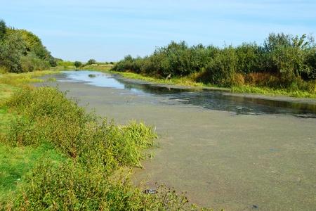 Green field near the river under blue sky Stock Photo - 10535952