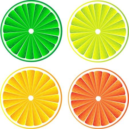 lemon lime: Limone, lime, arancio e pompelmo rosso isolato su sfondo bianco.