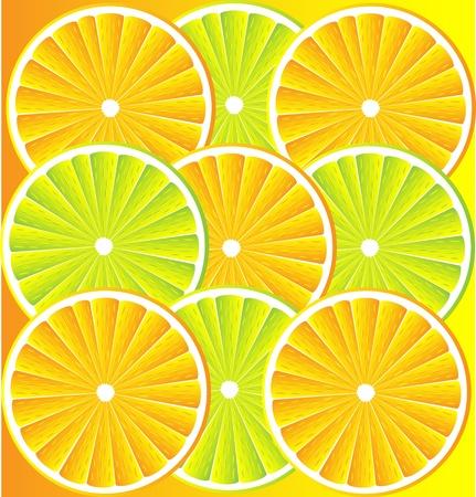 lemon lime: Citrus texture di fondo con le fette di limone, lime e arancio. Vector sfondo stilizzato. Vettoriali