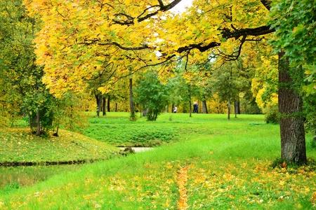 Mooie herfst park op de avond vóór zonsondergang