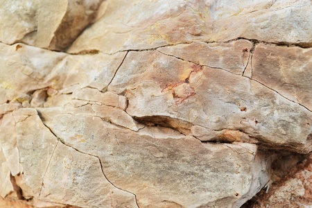 Close-up of brown gray rock . Texture or background. photo