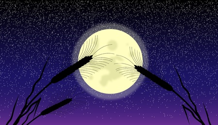 Ears of wheat at moonlit night - vector