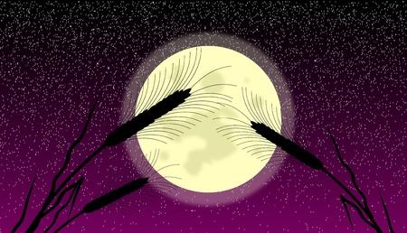 thresh: Espigas de trigo en la noche iluminada por la luna - vector
