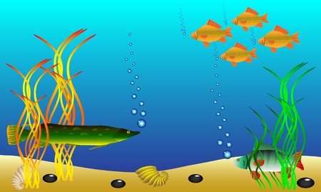 Underwater landscape - fish and seaweed - vector. Illustration