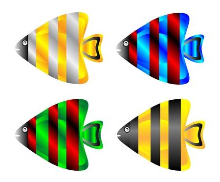 scalar: Tropical fish set isolated on white background