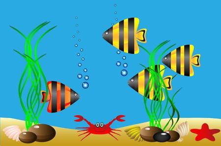 illustration of a sea life . Vector