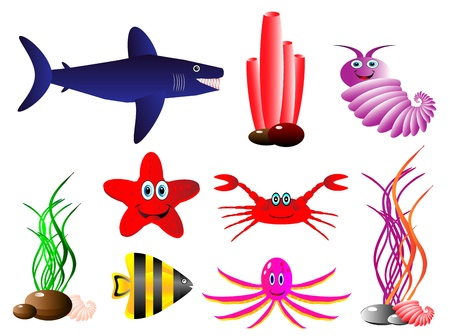 Set of sea animals isolated on white Vector