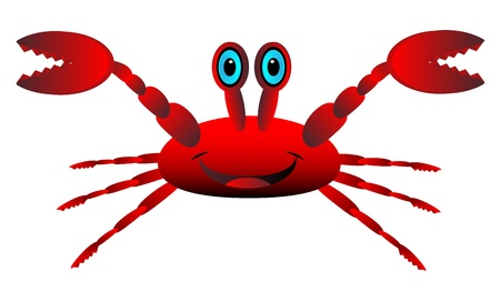cancer crab: Red crab isolated on white background . Illustration