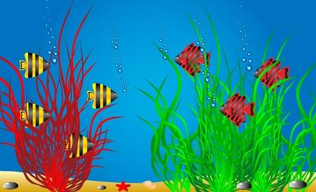 Ilustraci�n vectorial de una vida marina.