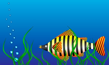 The marine life - a large tropical fish in green algae. Vector illustration. Vector