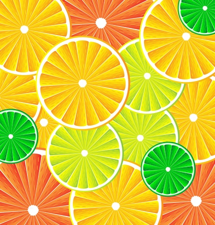 Citrus background texture with slices of lemon, grapefruit, lime and orange. Vector stylized background. Vector