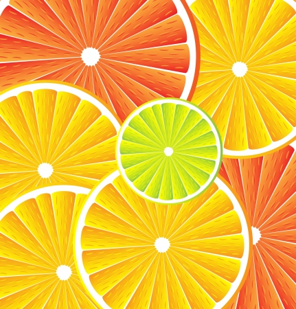 Citrus background texture with slices of lemon, grapefruit and orange. Vector stylized background. Vector