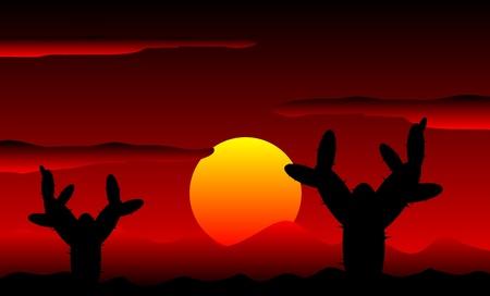 desert sunset: Mexico desert sunset with cactus plants - vector illustration Illustration