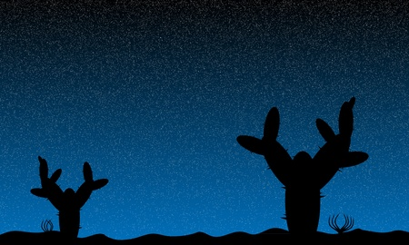 Mexico desert night with cactus plants - vector illustration Vector