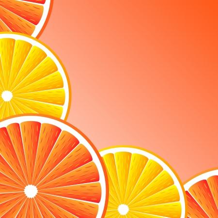 toronja: C�tricos de fondo con las rebanadas de toronja y naranja. Vector estilizada de fondo.
