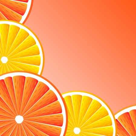 Citrus background with slices of  grapefruit and orange. Vector stylized background. Illustration