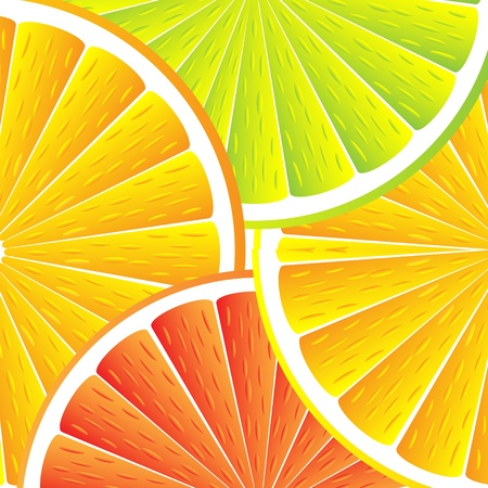 Citrus background with slices of lemon, grapefruit and orange. Vector stylized background.