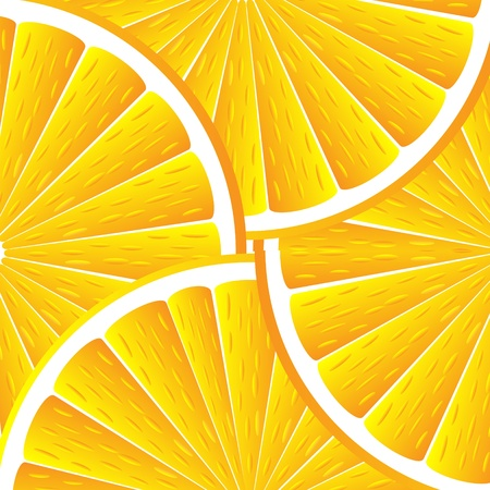 Citrus background with slices of orange. Vector stylized background. Vector