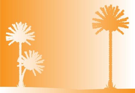 sundown: Vector illustration of tropical beach sunset .