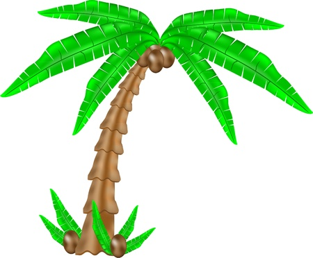 Green palm tree icon with grass isolated on white Vector