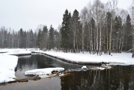 Winter in Gatchina park, Russia photo