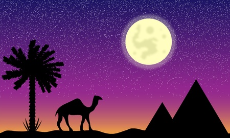 Night in Egypt with palms, pyramids and camel Stock Vector - 11356514