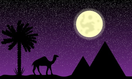Night in Egypt with palms, pyramids and camel Vector