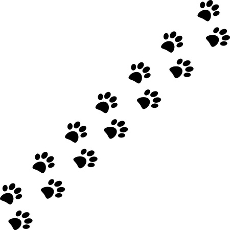 Paw trail isolated on white background