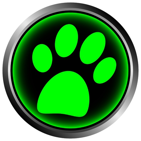 Paw button on white background