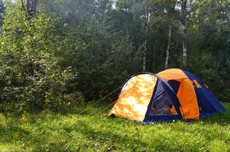 acampar: La foto de la tienda de campaña en el bosque de verano