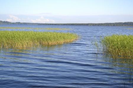 unexplored: View of Kavgolovskoe lake, Leningrad Region, Russia Stock Photo