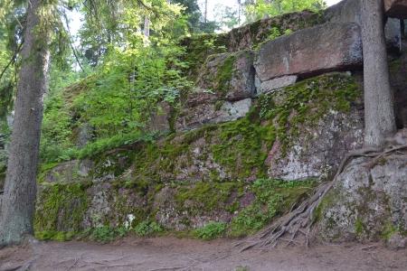 vyborg: The photo of stone in moss, Leningrad Region, Russia Stock Photo