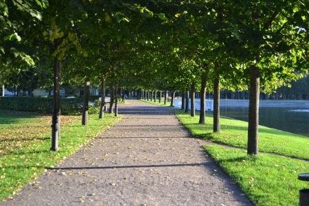 tallin: Alley in park, Tallin, Estonia.