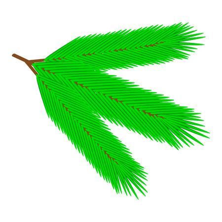 fur tree: Fur ramo di albero - illustrazione vettoriale.