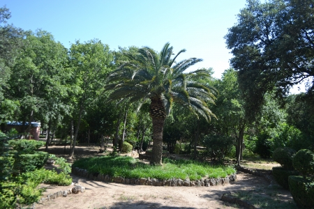 City park in Figueras, Catalonia, Spain. photo