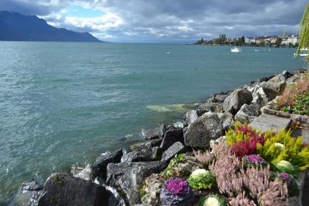 montreux: Flowerbed on embankment in Montreux, Switzerland. Stock Photo