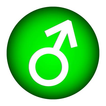 Gender male symbol button on white background.