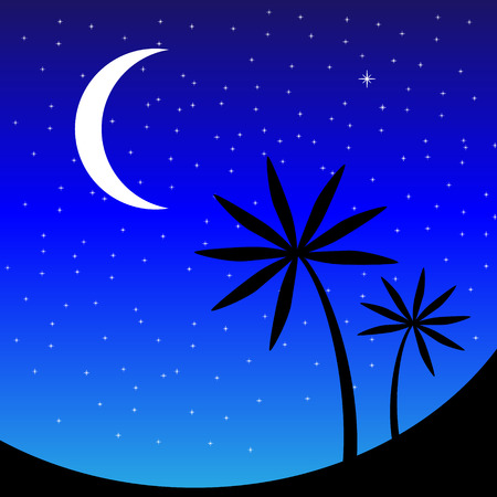 Landscape with palm trees at night - vector illustration. Vector