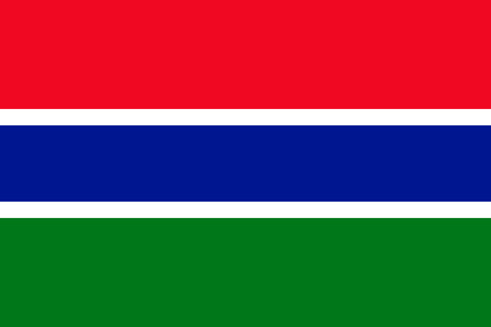 gambia: Flag of Gambia. Vector illustration.