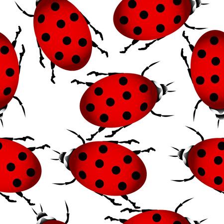 Ladybug on white seamless pattern. Vector illustration. Vector
