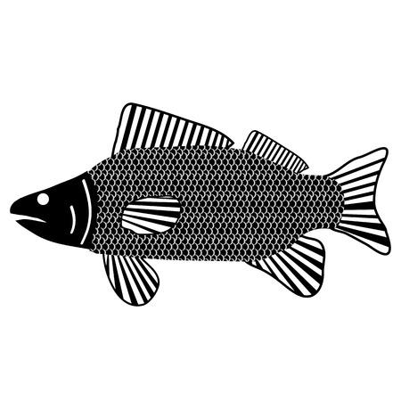 crucian: Fish icon on white background. Vector illustration.