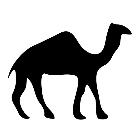 Camel icon on white background. Vector illustration. Vector