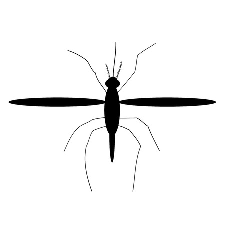 Mosquito icon on white background. Vector illustration. Illustration