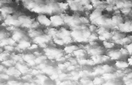 altocumulus: Altocumulus clouds. Black and white. Stock Photo