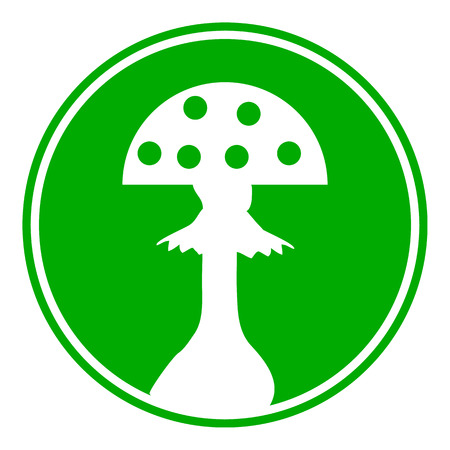plantae: Amanita button on white background. Vector illustration.