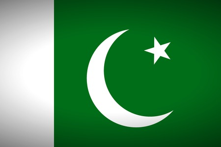 pakistan flag: Flag of Pakistan. Vector illustration. Illustration