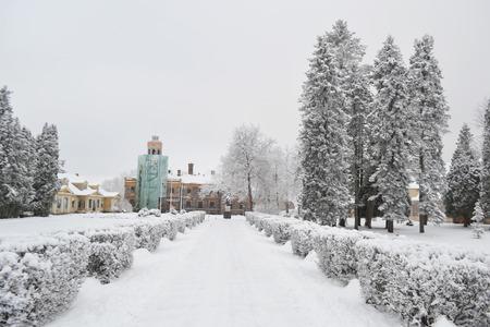 sigulda: Paisaje de invierno en Sigulda, Letonia.