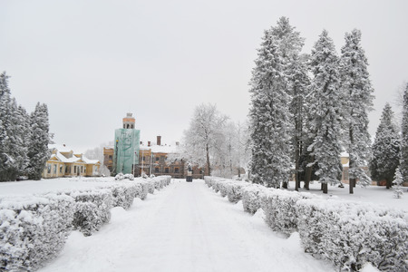 sigulda: Winter landscape in Sigulda, Latvia. Stock Photo