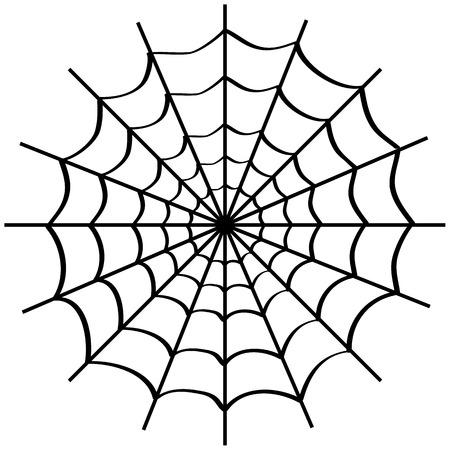 白い背景の上のクモの巣